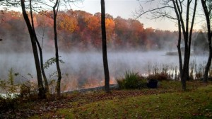 Misty October Lake by Diana Marcus